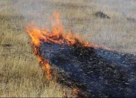 وقوع دومین حادثه آتش سوزی مراتع در ساوجبلاغ، اطفای حریق ادامه دارد