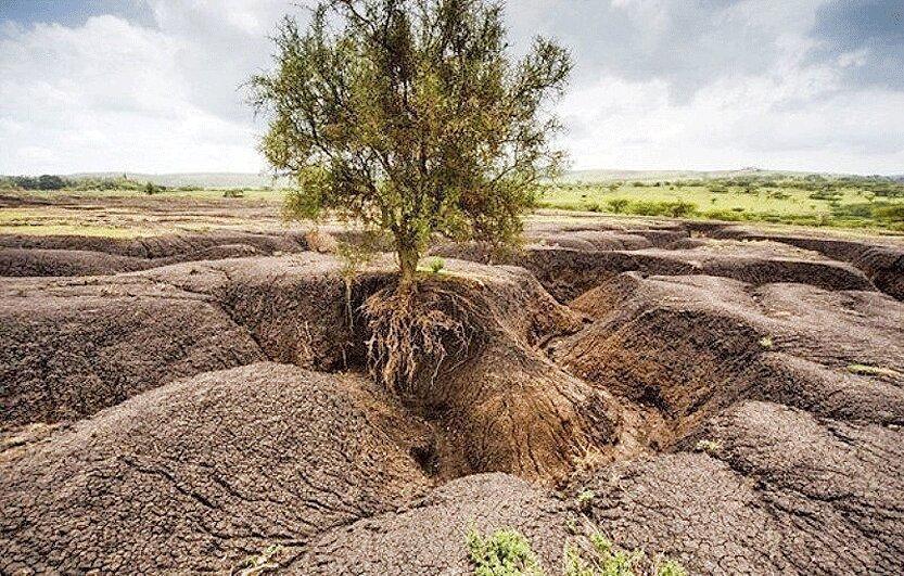 هشدار نسبت به فرسایش سالانه یک میلیارد تن خاک کشور ، وجود 300 هزار حلقه چاه غیرمجاز
