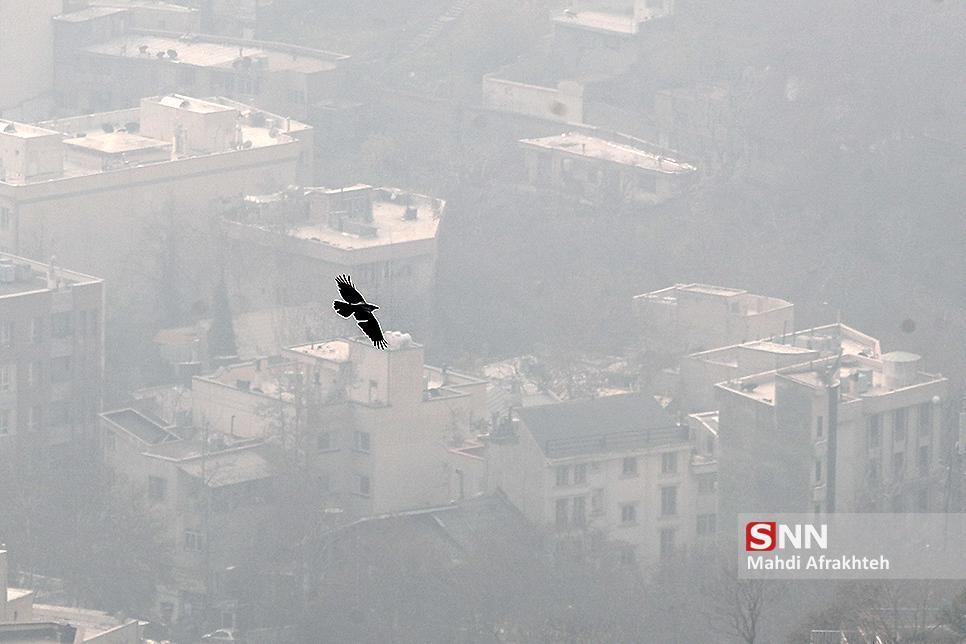 هوای تهران آلوده شد