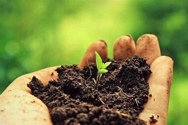 از خاک تا گرسنگی؛ توقف فرسایش خاک، حفظ آینده ما